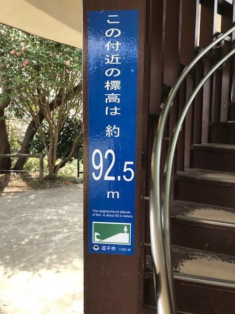 披露山 3.jpeg