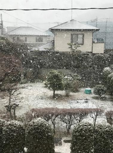 雪景色 1.jpg